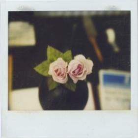 polaroids-soundcloud 4